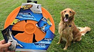 NERF Dog Flyer Review: MyDogLikes