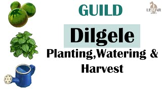 [ TREE OF SAVIOR ] Guild : Dilgele Planting, Watering & Harvest