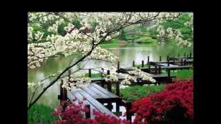 Jardines japoneses. HD-3D. Arte y Jardinería Diseño de Jardines
