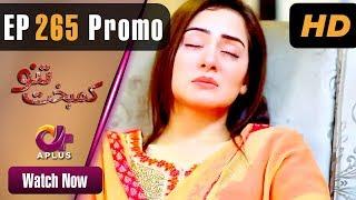 Kambakht Tanno - Episode 265 Promo | Aplus ᴴᴰ Dramas | Tanvir Jamal, Sadaf Ashaan | Pakistani Drama