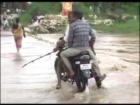 Flood situation grim in Odisha