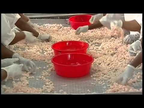 11th international indian fisheries and aqua culture forum