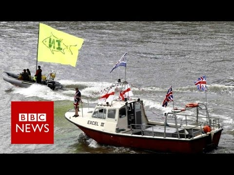 Geldof v Farage on the Thames - BBC News