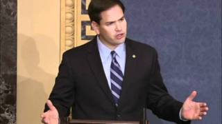Rubio: Internet Regulation Will Hurt Innovation and Job Creation