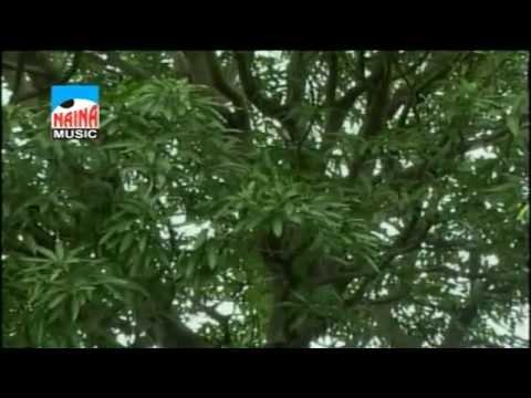 Koyal Dananli  - Marathi Song 2