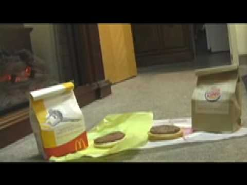 McDonalds vs Burger King , Dog Picks Best Burger Video, by Funny Coco Puff of JeepersMedia