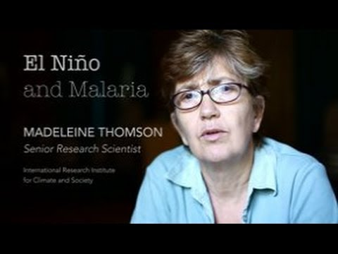 Madeleine Thomson on El Niño's potential impacts to malaria