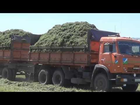 Учебный фильм по проведению основных этапов заготовки сенажа