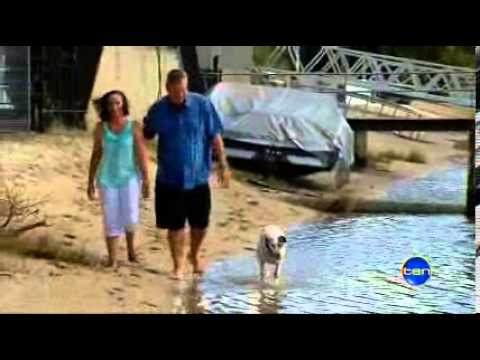 Rose-Hip Vital Canine on Channel Ten News April 25, 2013