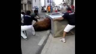 Impresionante rescate de un toro que se quedó atascado en una cabina de teléfonos