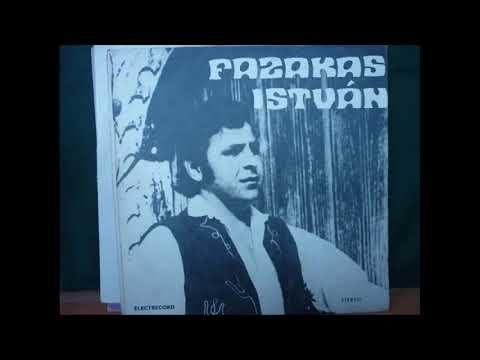 Fazakas István: Hargitai fecskemadár
