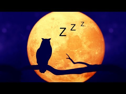 Sleeping Time: Relaxing Sleep Music - Anxiety Relief