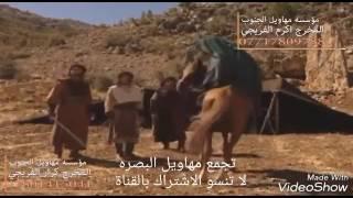 عقيل الفرطوسي 2017 موش تبوك احصان الزير