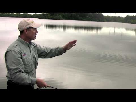 Tips on How to Catch Largemouth Bass from Shore using Casting Spoons