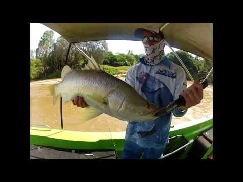 Barramundi Fishing Daly River Crossing