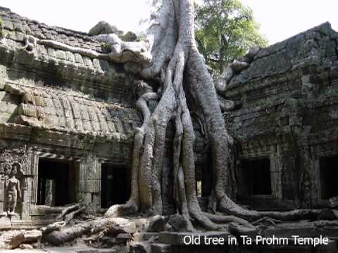Cambodia Video Guide HD (by HG Travel)