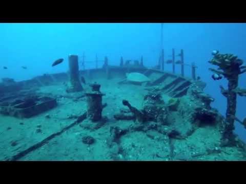 Sea Tiger Shipwreck Oahu Diving