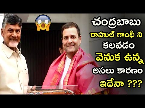 Reasons Behind The Ap Cm Chandrababu Naidu Meeting With Rahul Gandhi | TDP Party | TETV
