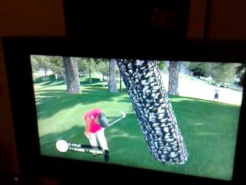 Tiger Woods Tree Shot