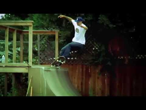 Emerica Presents the Andrew Reynolds Low Vulc
