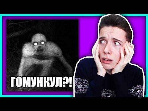 ГОМУНКУЛ ПЫТАЕТСЯ МЕНЯ УБИТЬ!!!!