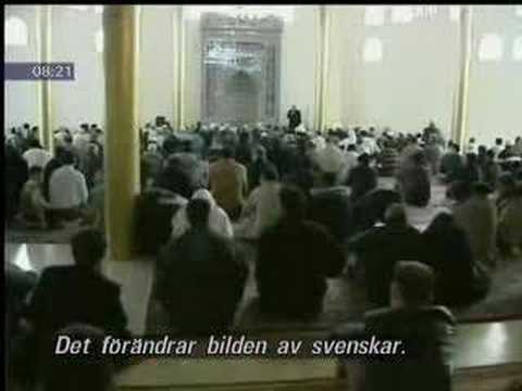Swedish Muslim Immigration Problem