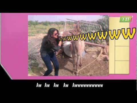 Money Money - Honey Bunny's Spoof : The Q-tiyatic Version video
