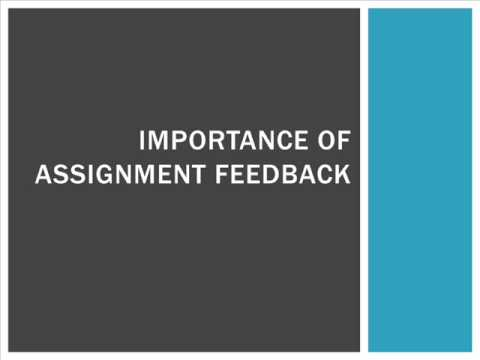 The Most Important Assignment Writing Help For Students