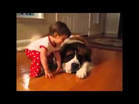 Ребеночек и собачка