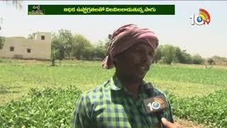 కష్టాల కడలిలో కూరగాయల రైతు | Vegetable Farmer Problems | Matti Manishi  News