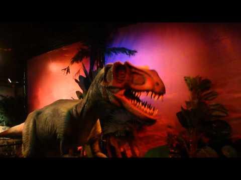 Dino live exhibition @ Times Square Dubai