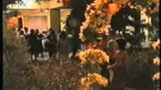 matura 4d 2003 lushnje. gjimnazi JANI NUSHI LUSHNJE