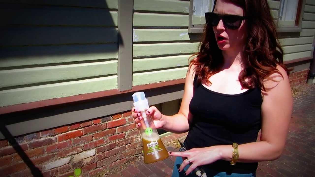 Natural Rose Bug Spray Diy Spunky Real Deals Youtube