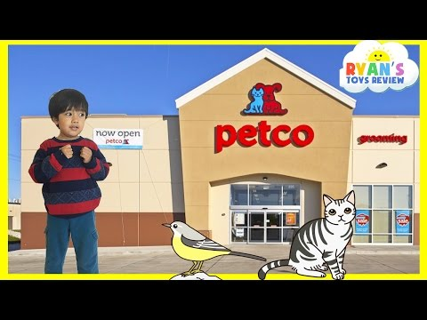 Family Fun Trip to PetCo Animals for Kids Children and Toddlers Ryan ToysReview
