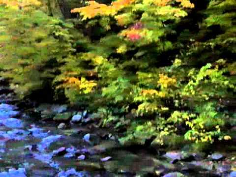 紅葉の秘湯 ランプの宿青荷温泉