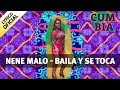Nene Malo   Baila y Se Toca Lyric  Official 2016 -