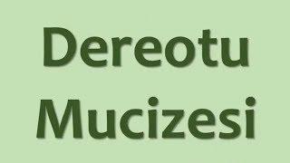 Dereotu Mucizesi