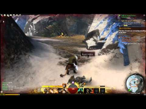 Guild Wars 2 Daily: Up Close in Lag