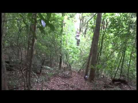 Costa Rica Original Canopy ZIP tour