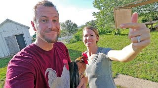 50 questions answered by the CRAzY chicken family