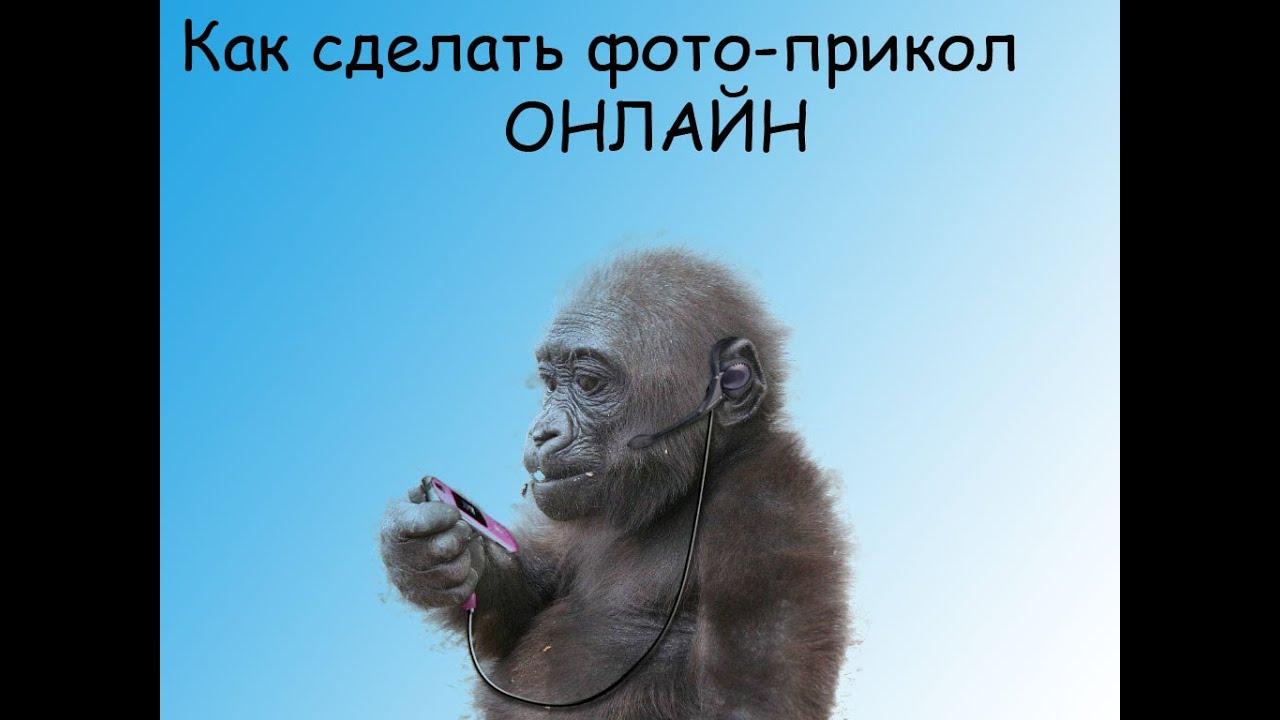 создать фотоприкол: