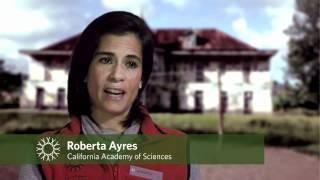 Science Today: Extreme Islands - Sao Tome & Principe   California Academy of Sciences