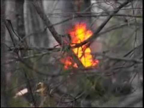 Police make arrest in Harlan County fires - Angela ...