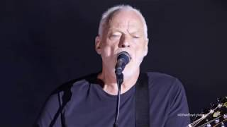David Gilmour Wish You Were Here 34 Live At Pompeii 2016