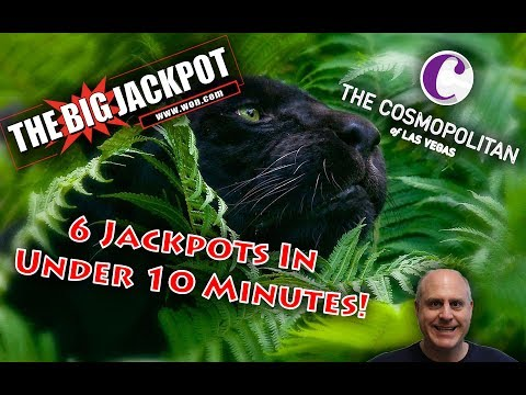 💣💰The Raja Hits 6 Jackpots In Under 10 Mins! | Shadow Of The Panther 🎰
