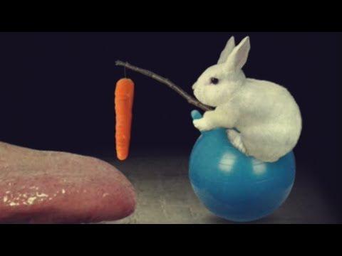 НЕОБЫЧНЫЕ ИГРЫ Mitoza упоротое видео игра
