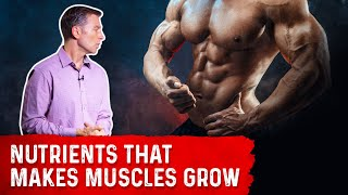 Key Nutrients that Make Your Muscles Grow