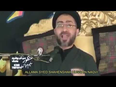 Hum Ashab-e-Paighamber Ko Mante Hain by Allama Shahenshah Hussain Naqvi
