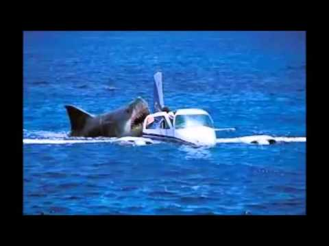 Megalodon Shark Attack Caught On Tape Attacking Crashed Air Plane Off Coast of Cambodia real or ...