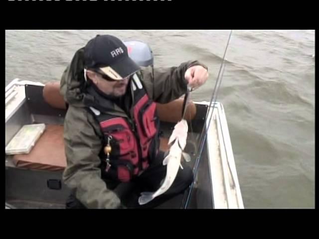 ведущий рыболовной передачи